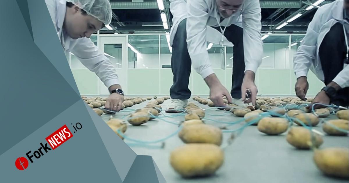 В Беларуси построят завод, выпускающий устройства для майнинга