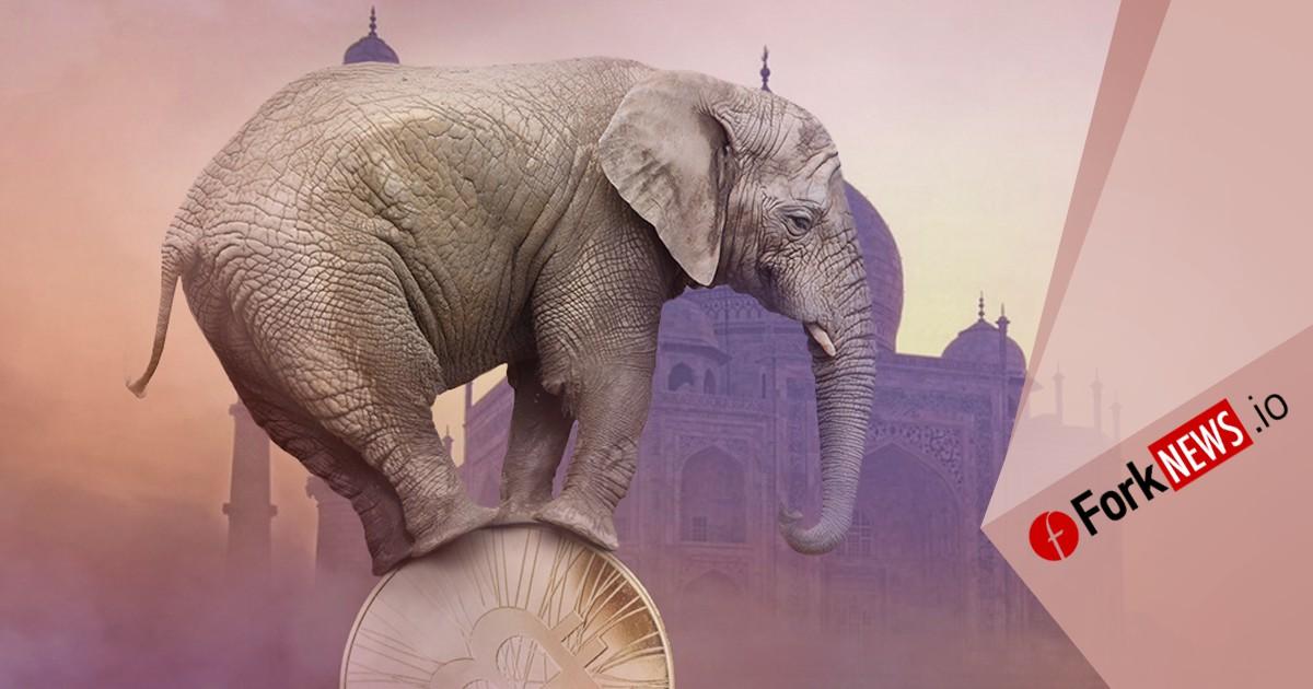 Криптовалютные биржи Индии замораживают свою деятельность
