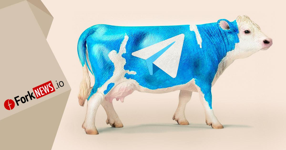 Публичная продажа токенов Telegram: такая корова нужна самому