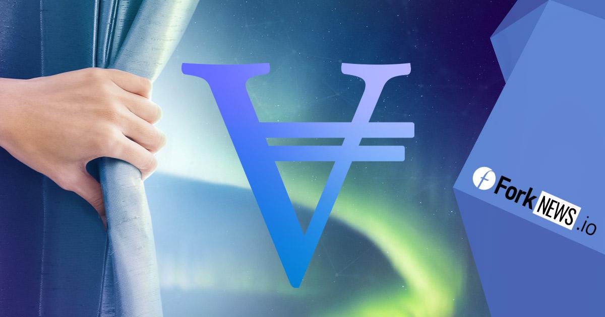 Новый токен VIC с собственным финансированием