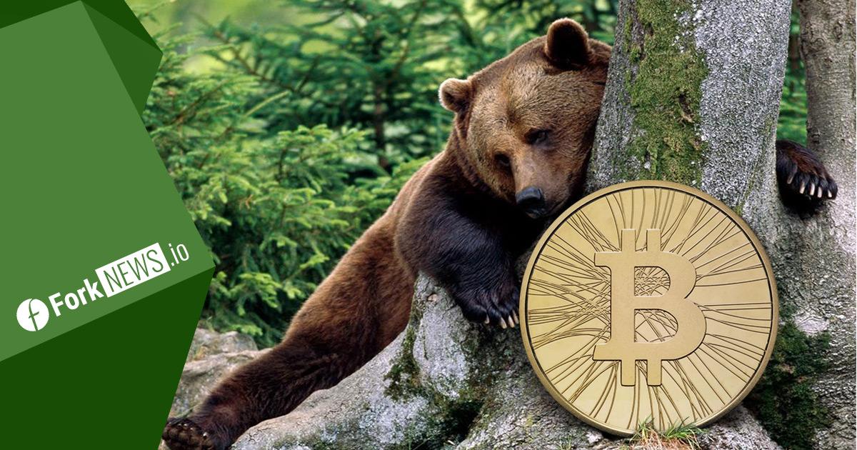 Медвежий цикл и возможные перспективы