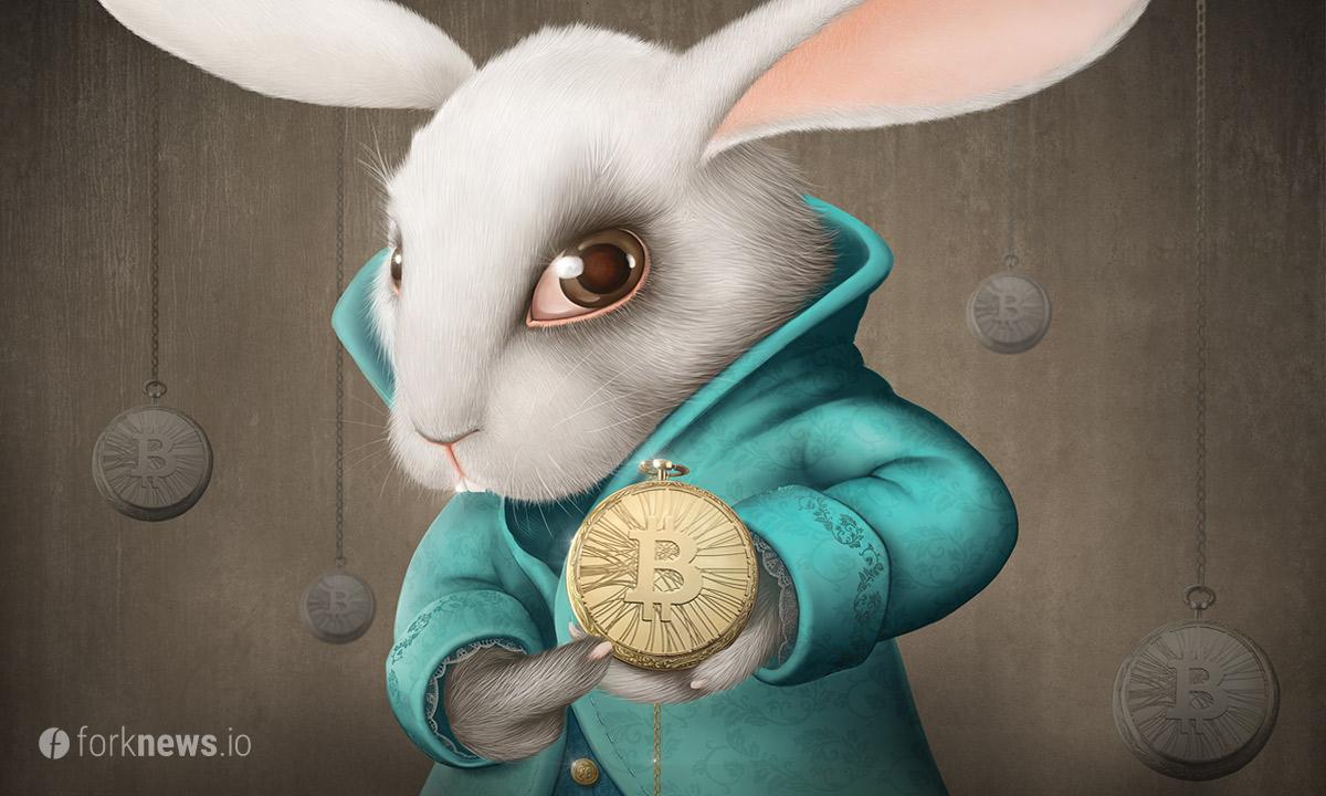 «Белый кролик» угрожает анонимности транзакций в сети биткоин