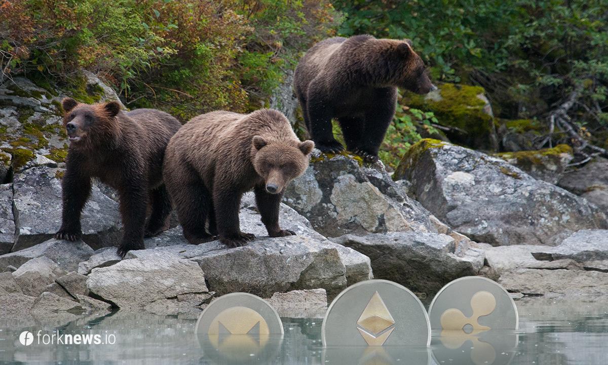 Как алькоины пережили медвежий тренд?